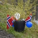 Pynt_Hjellen_5095