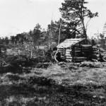 12Bjøråøyan