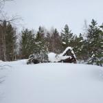 11 seterfjøset nestua Hjellenes
