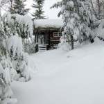 36 Skaubu i vinterdrakt