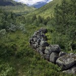 40 steinutgard