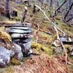 25 restane etter Trondløa i Tårnet