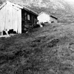 35 øyåsetra 1953