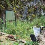 dsc_7579-innganger-til-bunkersen-i-fjellet