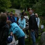 Foto: Svinviks Arboret
