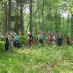 32 Trimgruppa sin fellestur til StorJohannes 11.juni