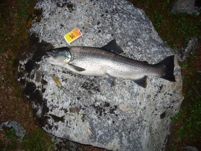 Fiske i Todalen. Foto: Kristian Gjeldnes