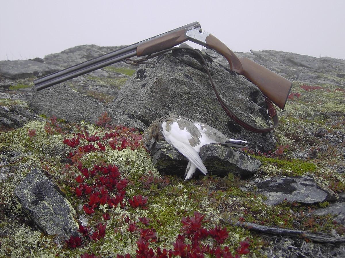 Jakt  og  fiske  til  fjells