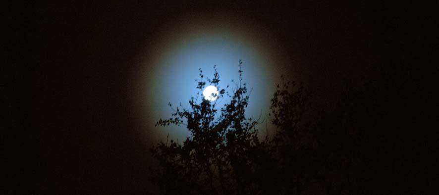 Praktfull måne