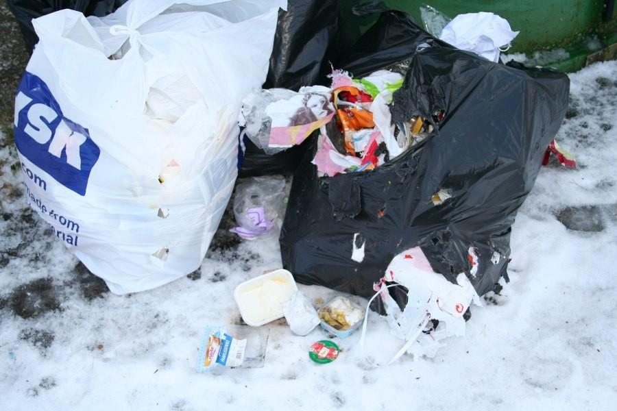 Forsøpling ved miljøkonteinerane