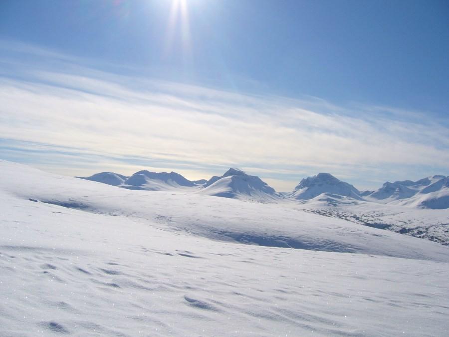 Høgt  til  fjells