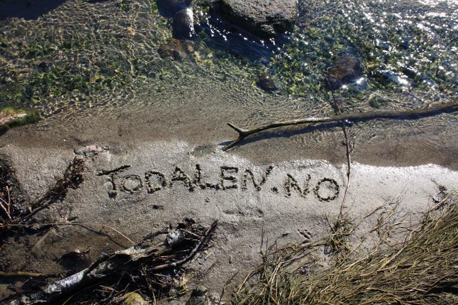 Skrift  i  sand