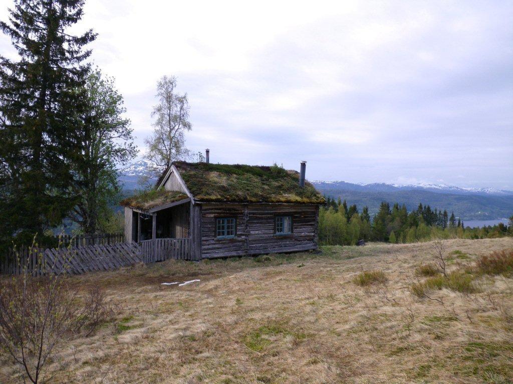 Tur til Torviksetra