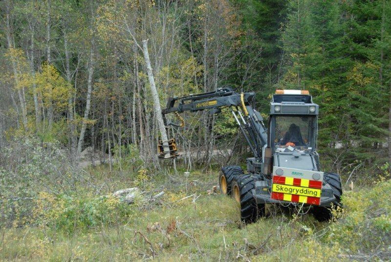 Skog-kompaniet er medlem