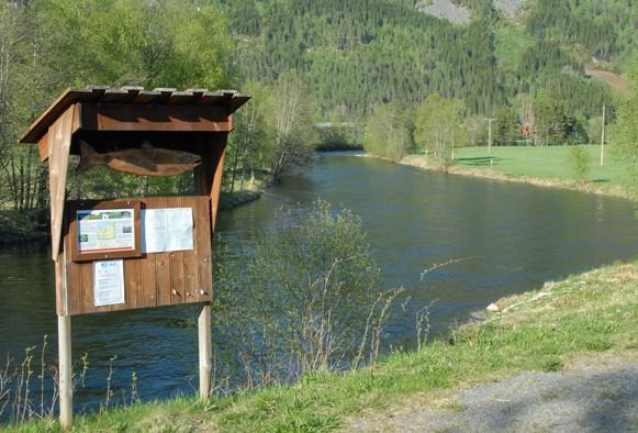Laksefisket startar 15. juni