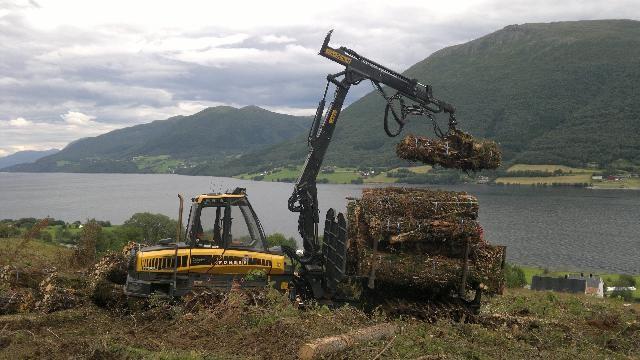 Full fart i Skog-Kompaniet