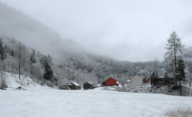 Den  første  snøen….