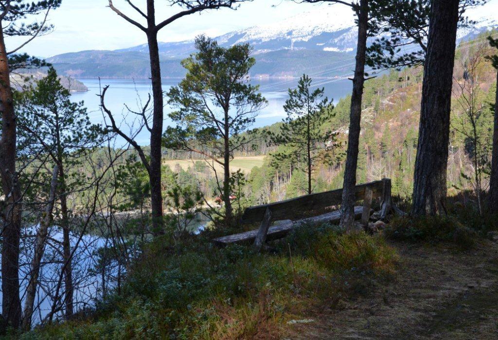 Turtips: Gammelvegen ved Svinvika