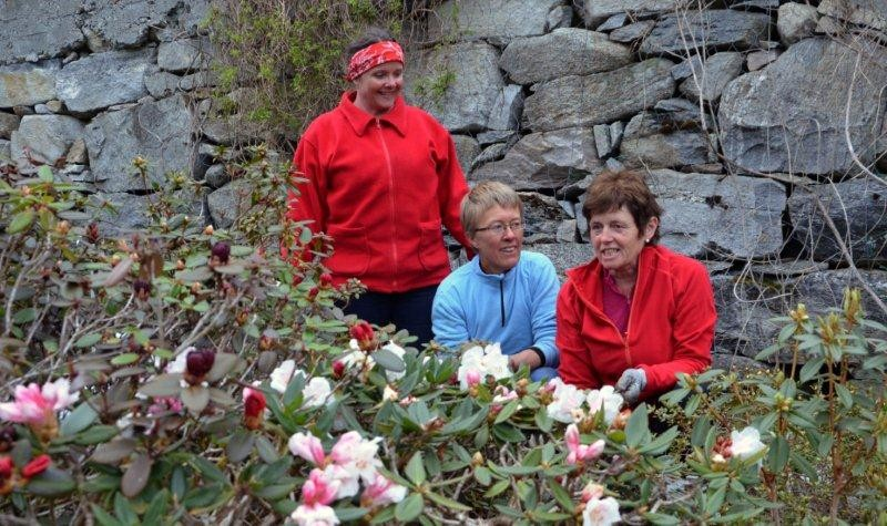 Snart klart for opning i arboretet