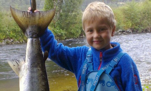 Liten  storfiskar  i  Toåa