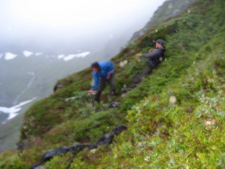 Sauberging oppi Sulå