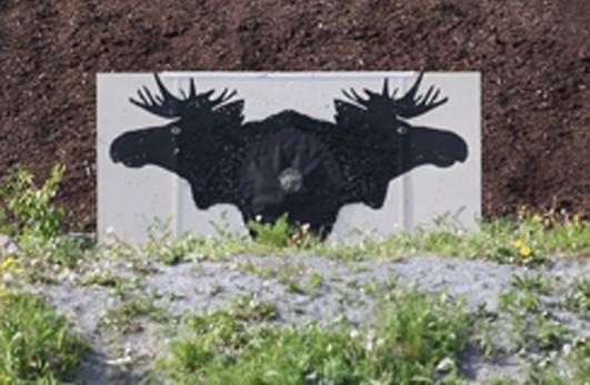 Årsmøte  –  Søya  og  Todalen  skytterlag