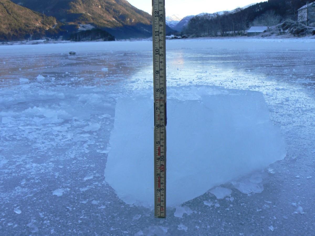 19 cm tjukk is