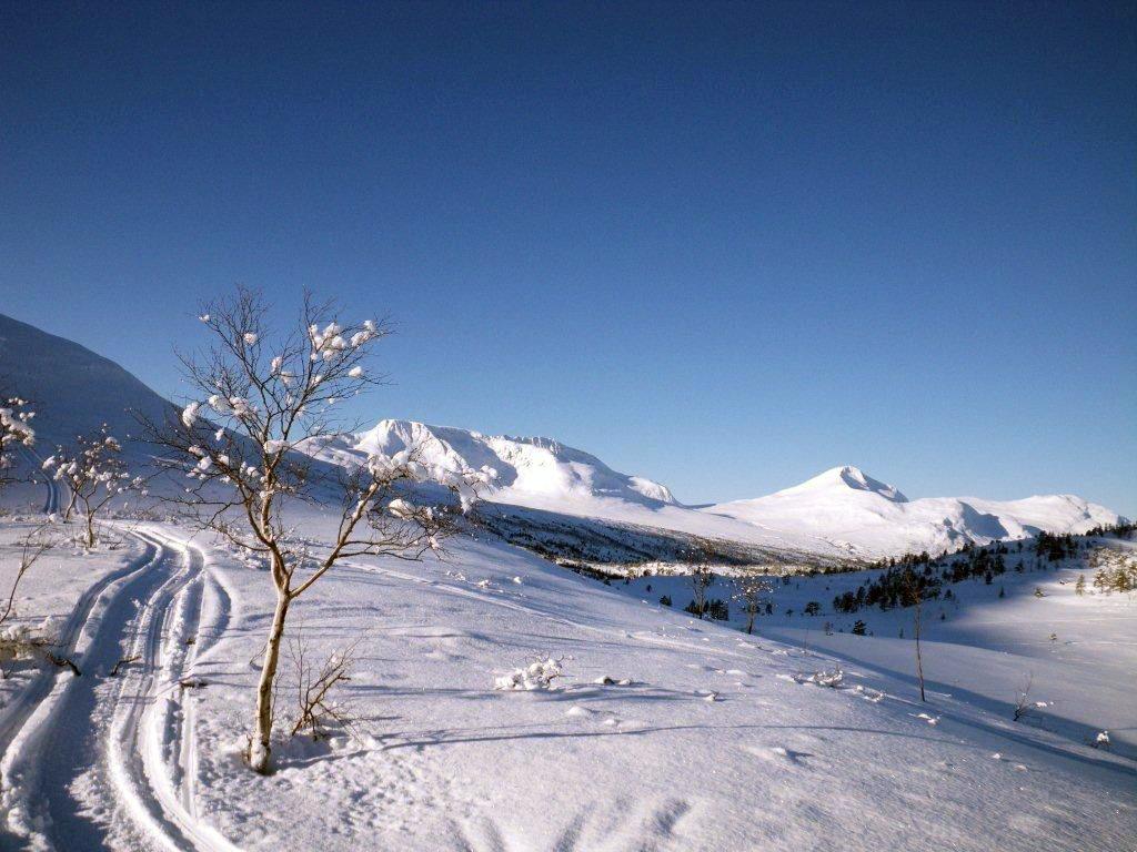 Vinterferie  –  fint  skiføre  i  fjellet