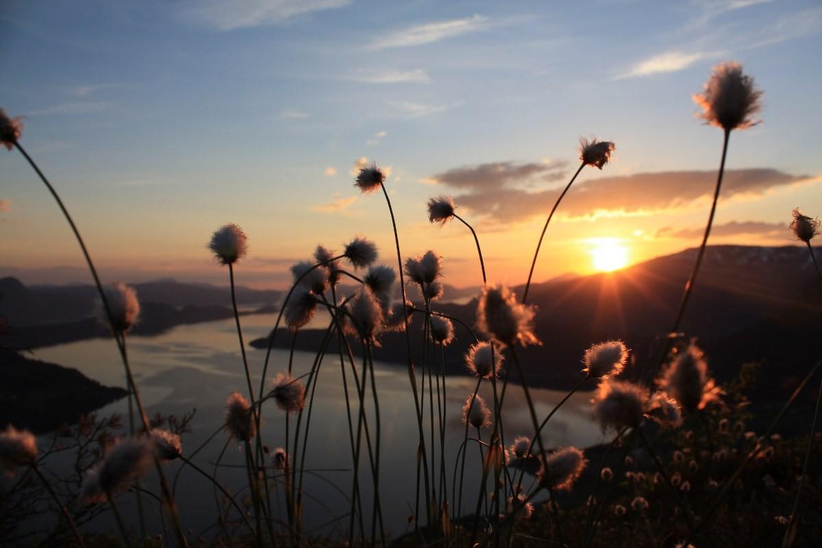 Månadens  bilete:  Solnedgang  på  Svinvikhammranj