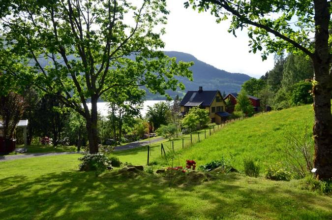 Svinviks arboret er arena og base for Norsk Vandrefestival  Arkivfoto: Jon Olav Ørsal