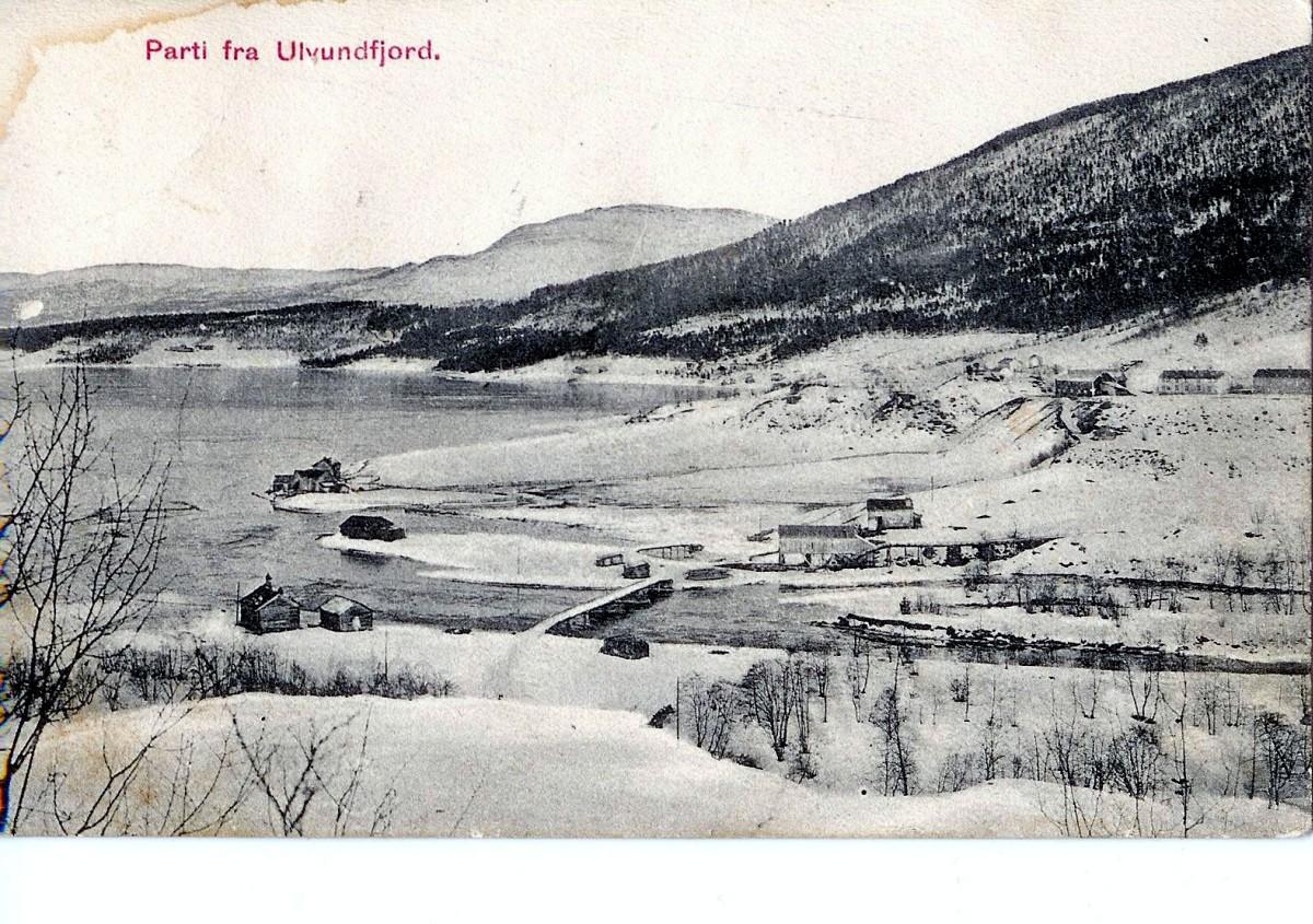 Kulturlandskapsvandring  i  Ålvundfjord.