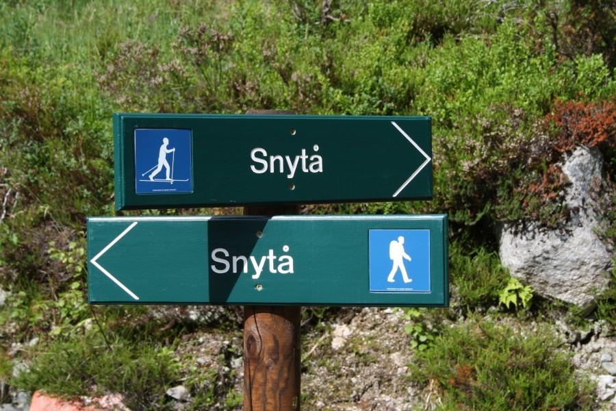 Stigruppa  på  Nordvik  i  rute
