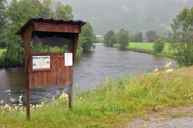 Regnvêret  fortsett  –  betring  i  fisket?