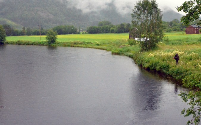 Lite innsig – strengare handtering av laksefisket