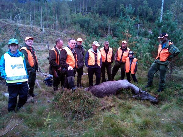 Starta jakta med elgfall