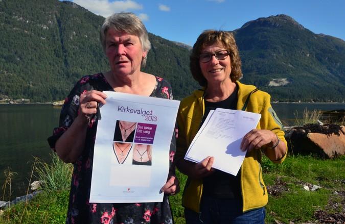 Soknerådsvalet  2013  –  kom  og  stem!