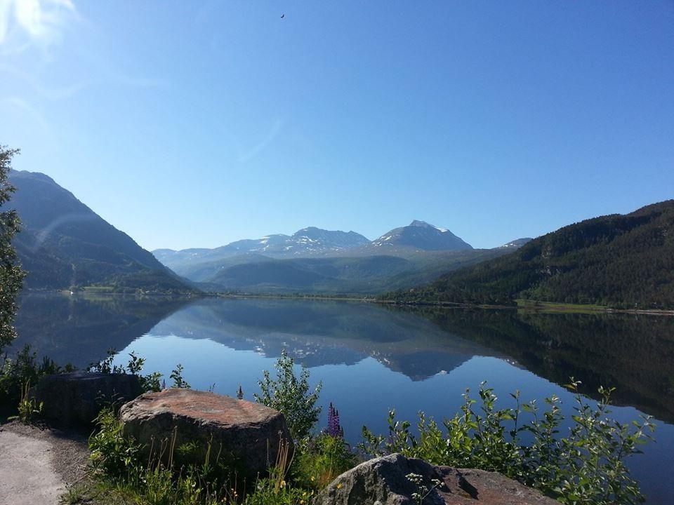 Månadens bilete: Blekkstilt i Todalsfjorden