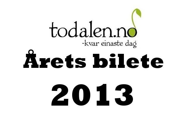 Stem på «Årets bilete 2013»