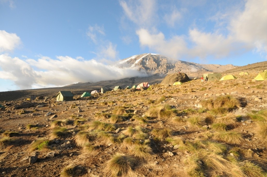 Reisebrev frå Kilimanjaro