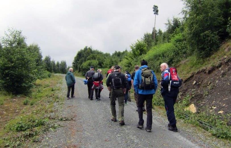 Kulturvandring: På tur utover den nye skogsbilvegen i Stangvikliene. Målet er Storsetra.