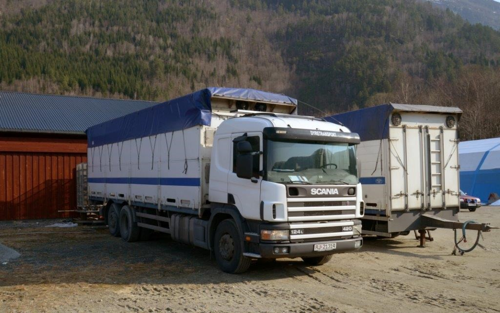 Dyretransport_9756