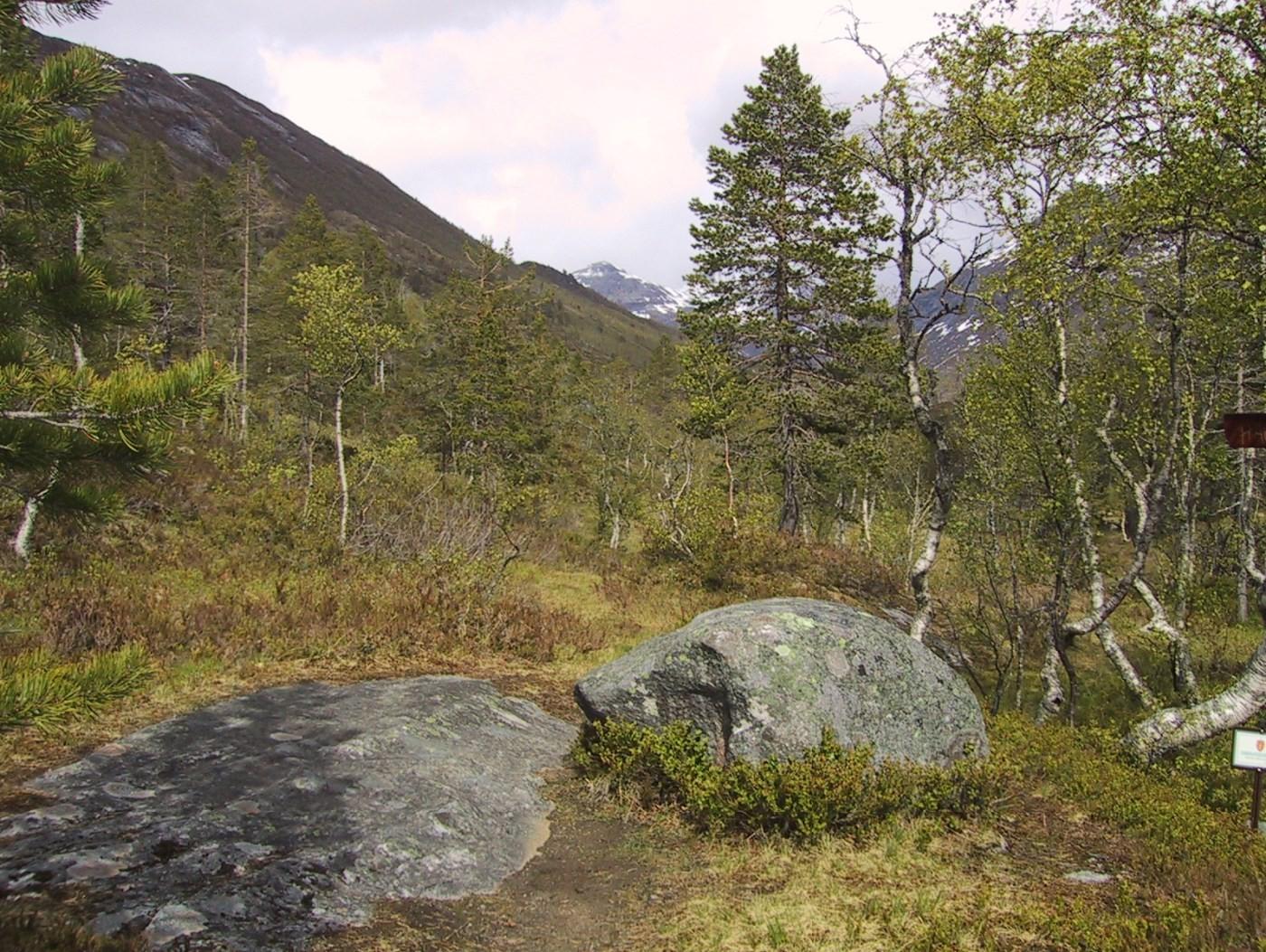 Haukarsteinen - slik deg såg ut i 2001!  Arkivfoto: Jon Olav Ørsal