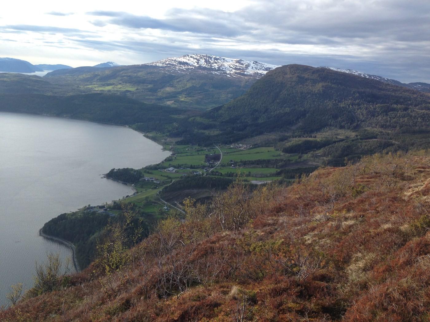Utsikt: Nordvik, Åsbøsnytå, og Strengen. Foto: Mari B. Redalen