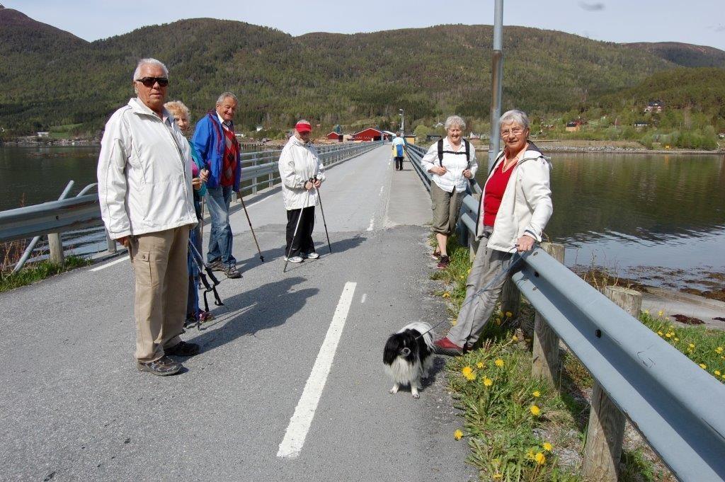 Stavganggruppa på tur til Bøfjorden og Buret. Bøfjordbrua i bakgrunnen. Foto: Vidar Sogge