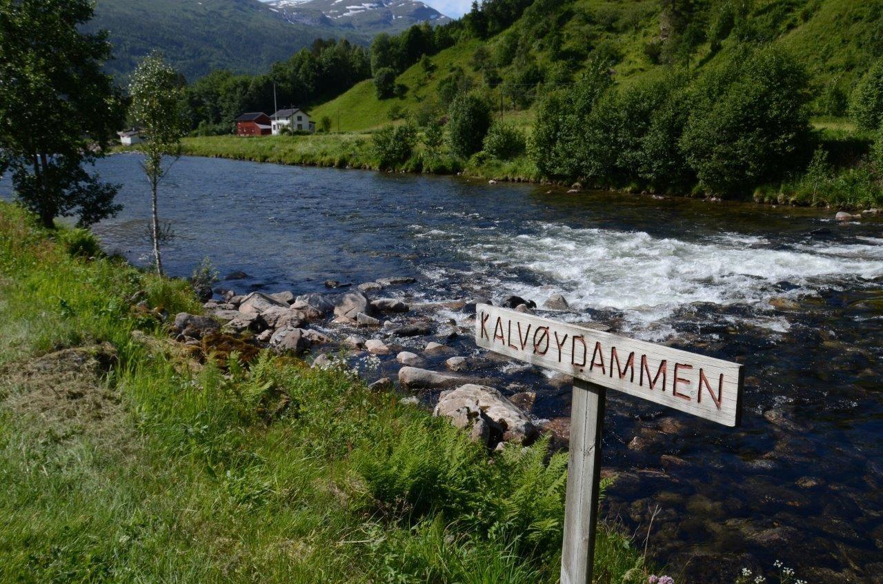 Frå Kalvøydammen.  Arkivfoto: Jon Olav Ørsal
