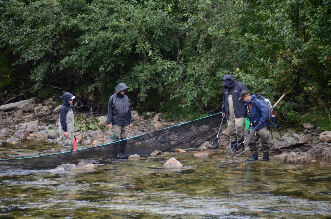 Forskningsfisket føregikk nedafor Raubekkhølen i Toåa.  Foto: Jon Olav Ørsal