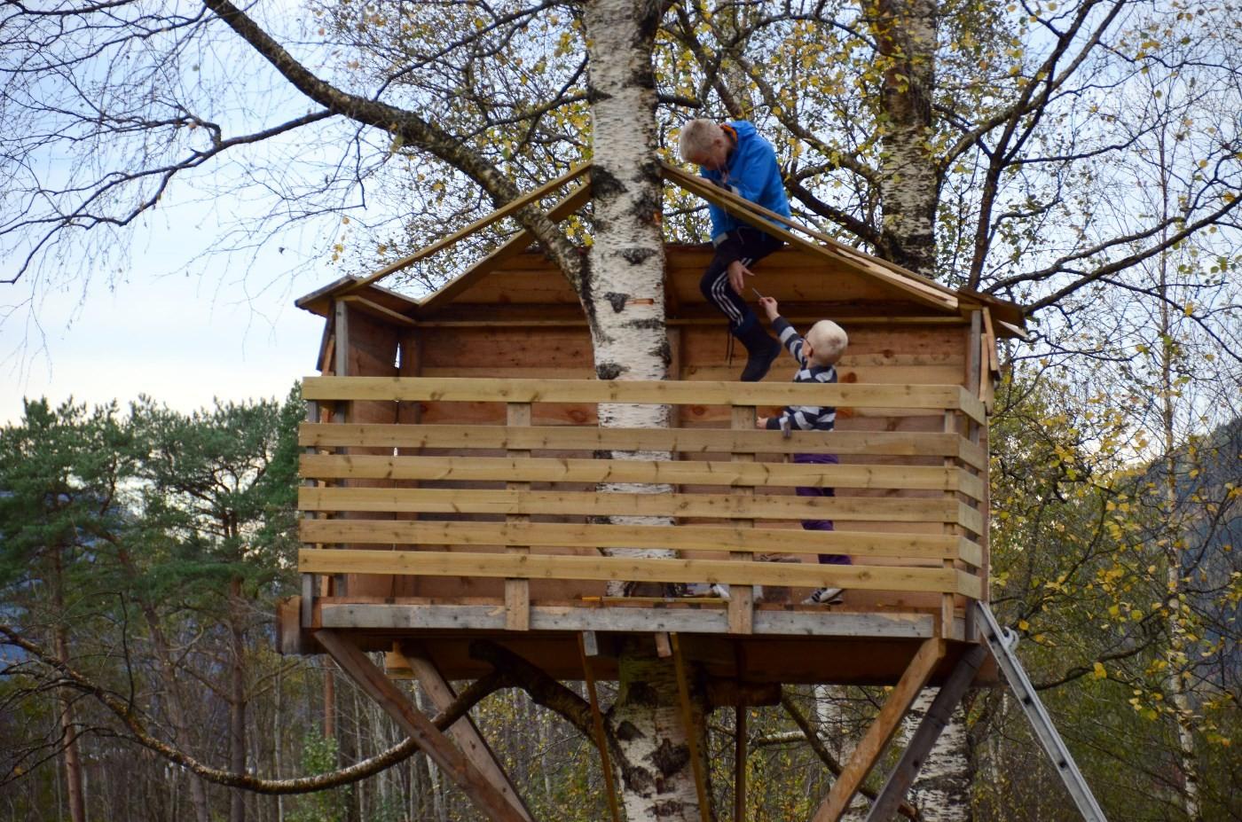 Her blir det hyttetak - markus er handtlangar , medaqn Eivind svingar hammaren.  Foto: Jon Olav Ørsal