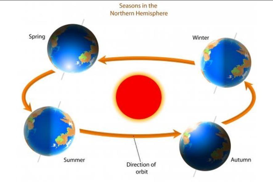 Slik ser syklusen ut for jordas gang rundt sol gjennom året.   Illustrasjon fra internett