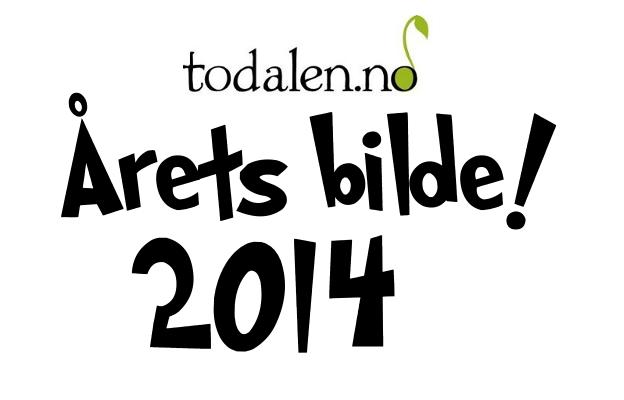 Stem på Årets bilete 2014