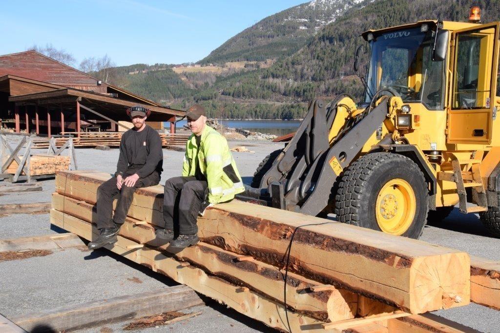 Ivar Bolme og Råg Mikkelsen med den grove planken. Stokken kjem frå Hjellnes - i bakgrunnen på bildet.  Foto: Jon Olav Ørsal